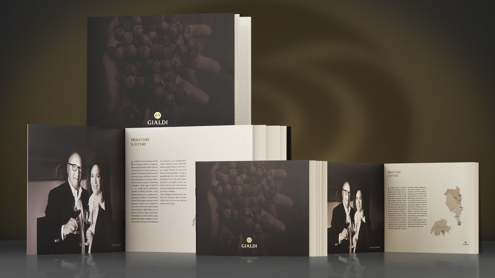 Gialdi brochure global design